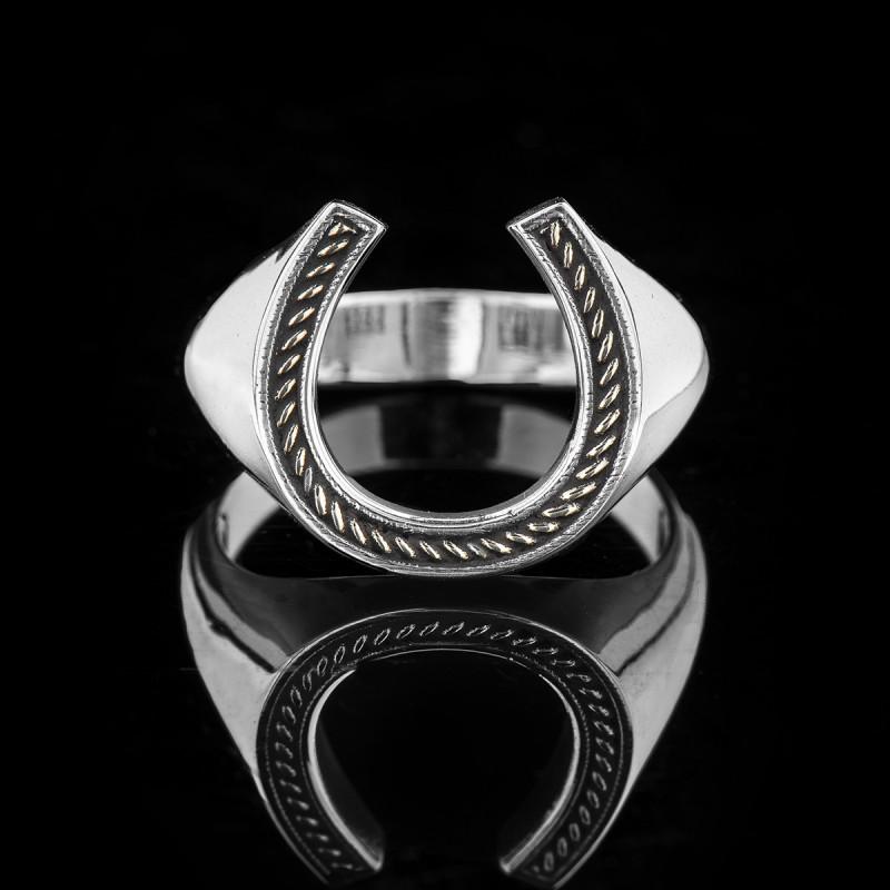 Horseshoe silver & gold